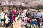 <b>新潟のお花見シーズンは?ヽ('ー'#)/</b>