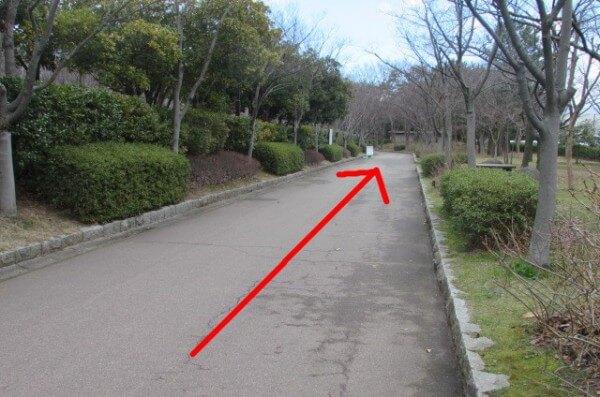 遊歩道を約100メートルまっすぐ歩く