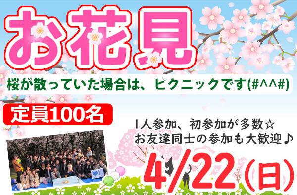 新潟市 お花見 2018