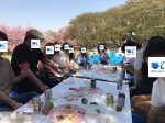 <b>4/22(日)に、新潟市で、「お花見イベント」を開催しました(〃▽〃)</b>