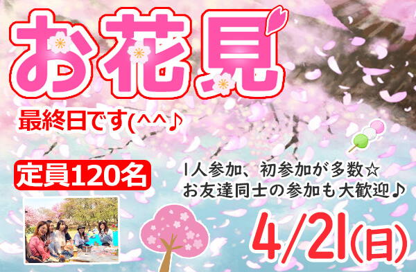 新潟 お花見イベント