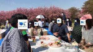 20180422_お花見イベント3