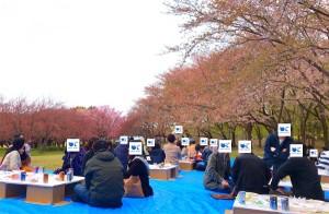 2019-4-21【お花見】2