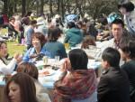 <b>新潟市の出会いと交流♪「お花見イベント」</b>