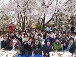 <b>新潟市で、出会い、交流、「お花見」を90名で開催しました(*^_^*)</b>