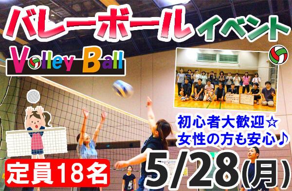 新潟市 バレーボール