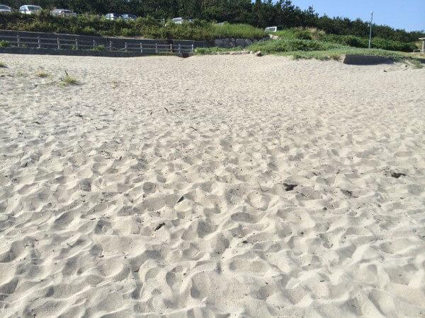 新潟市 関屋浜掃除
