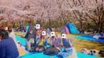 <b>新潟市で4/13(土)に、「お花見イベント」を開催しました( ・´ω`)</b>