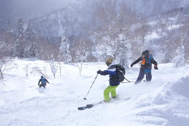 新潟 スキースノボ