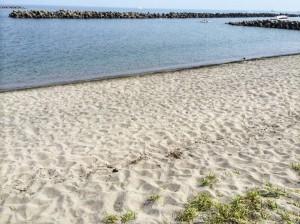 20180721_関屋浜掃除4