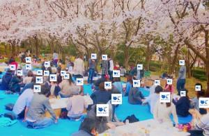 2019-4-14【お花見】4