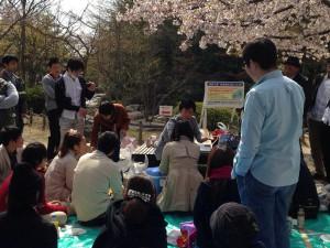 春のお花見3